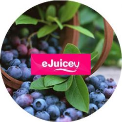 eJuicey Blueberry E-Liquid 10ml